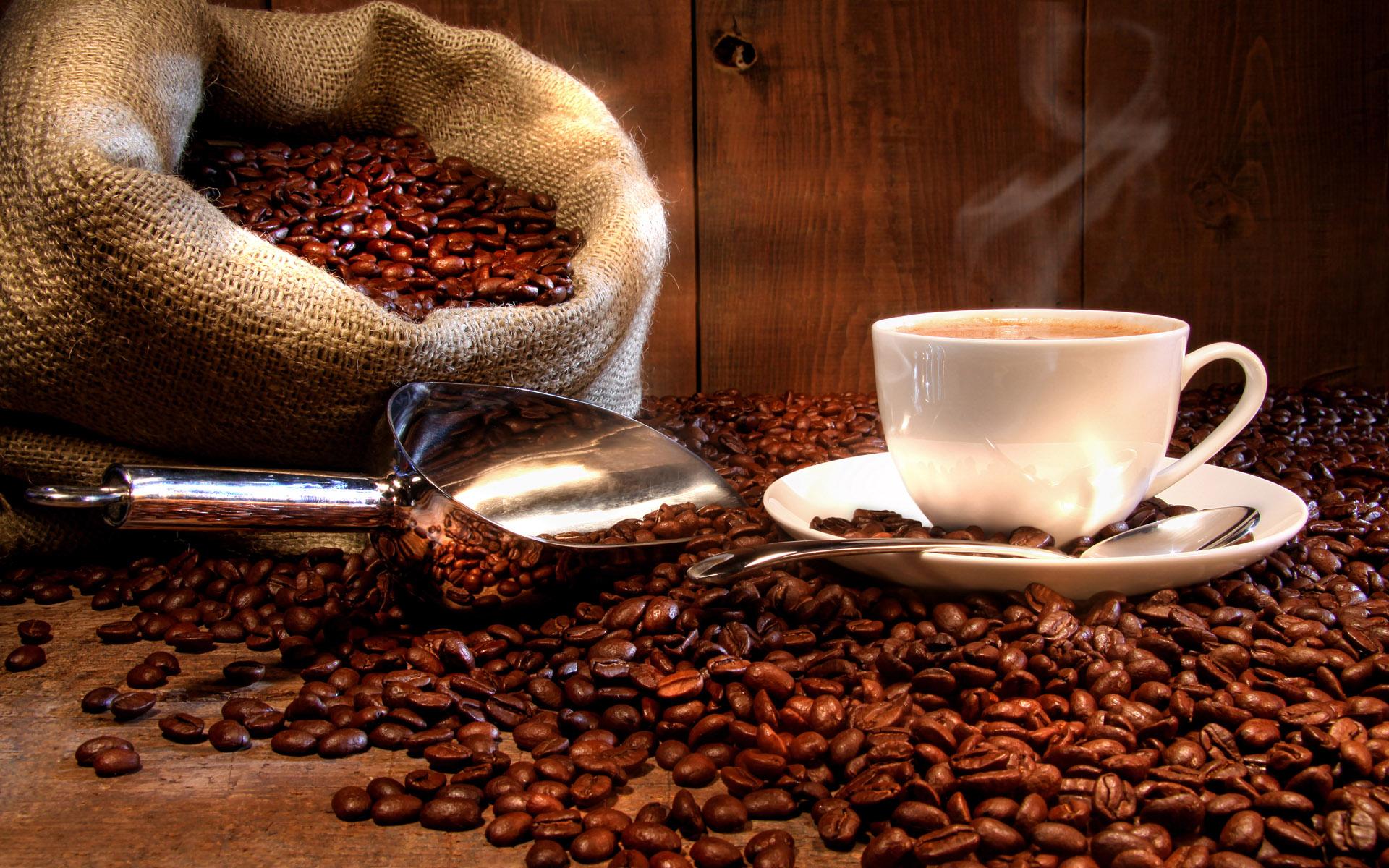 咖啡、可可、綠茶影響內分泌刺激神經