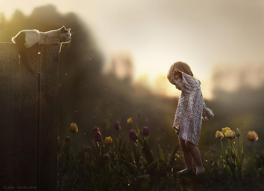 cool-animal-children-photography-Elena-Shumilova-cat