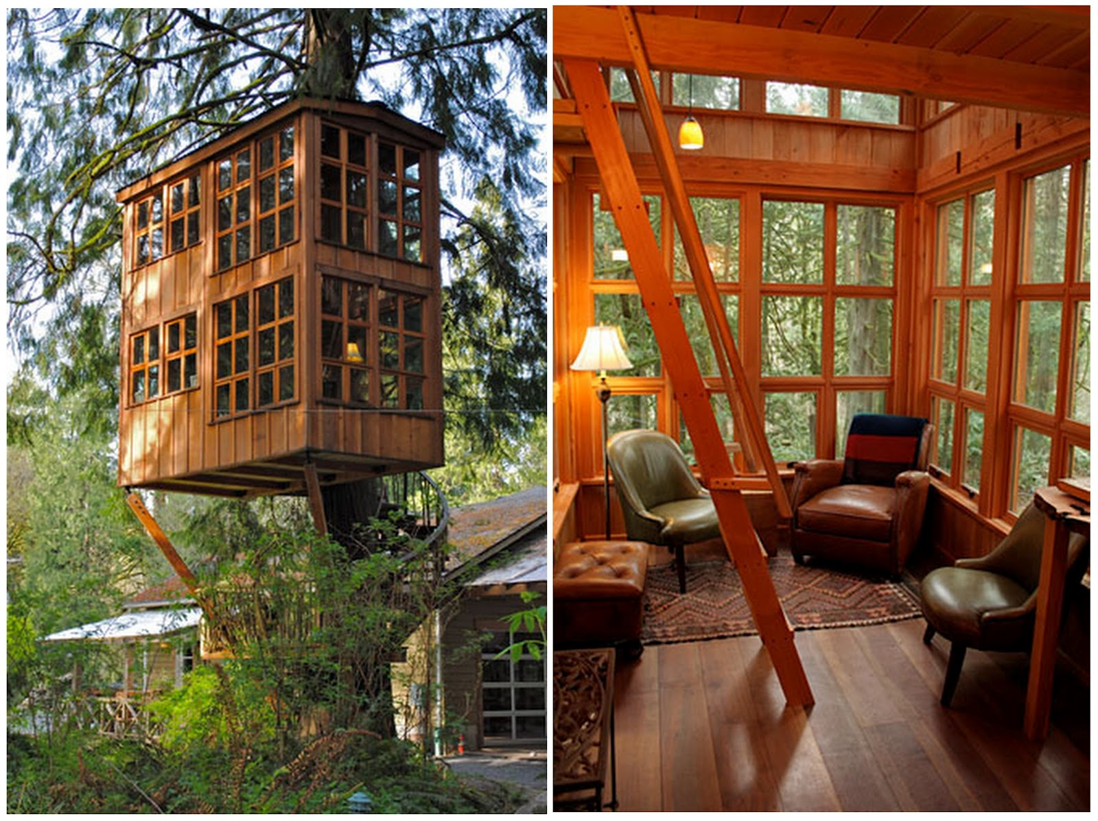 These Are Some Stunning Pictures Of Tree Houses Around The